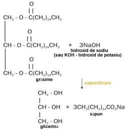arde reacția chimică a grăsimilor